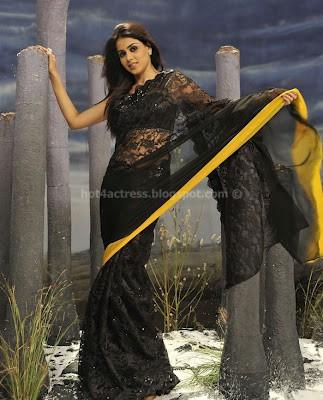 Genelia looking hot in saree