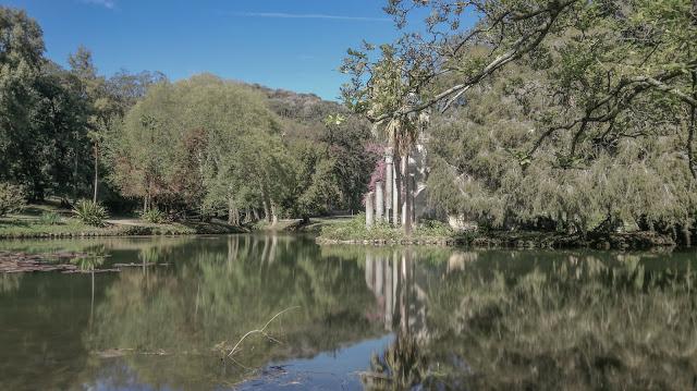 Ruderi nel lago delle ninfee