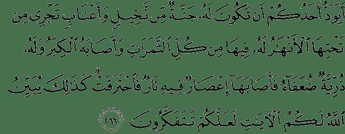Surat Al-Baqarah Ayat 266