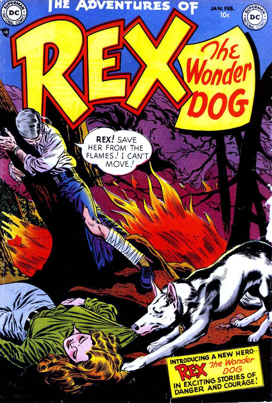Adventures of Rex the Wonder Dog v1 #1 dc 1950s golden age comic book cover art by Alex Toth