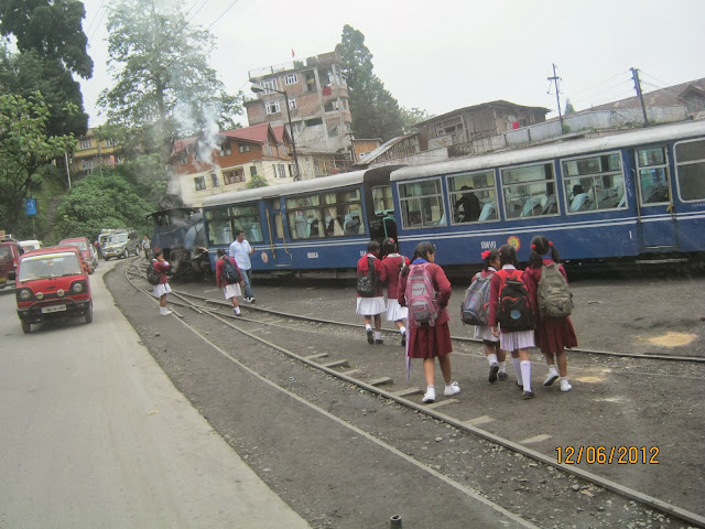 Toy train , Darjeeling
