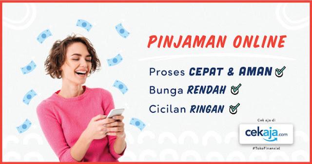 5 Tips Aman Meminjam Uang Melalui Aplikasi Pinjaman Online, Pinjaman Online di cekaja.com (cekaja.com)