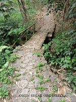 lokasi trekking dibogor