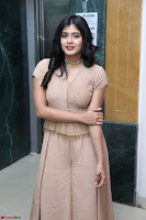 Hebah Patel in Brown Kurti and Plazzo Stuunning Pics at Santosham awards 2017 curtain raiser press meet 02.08.2017 001.JPG