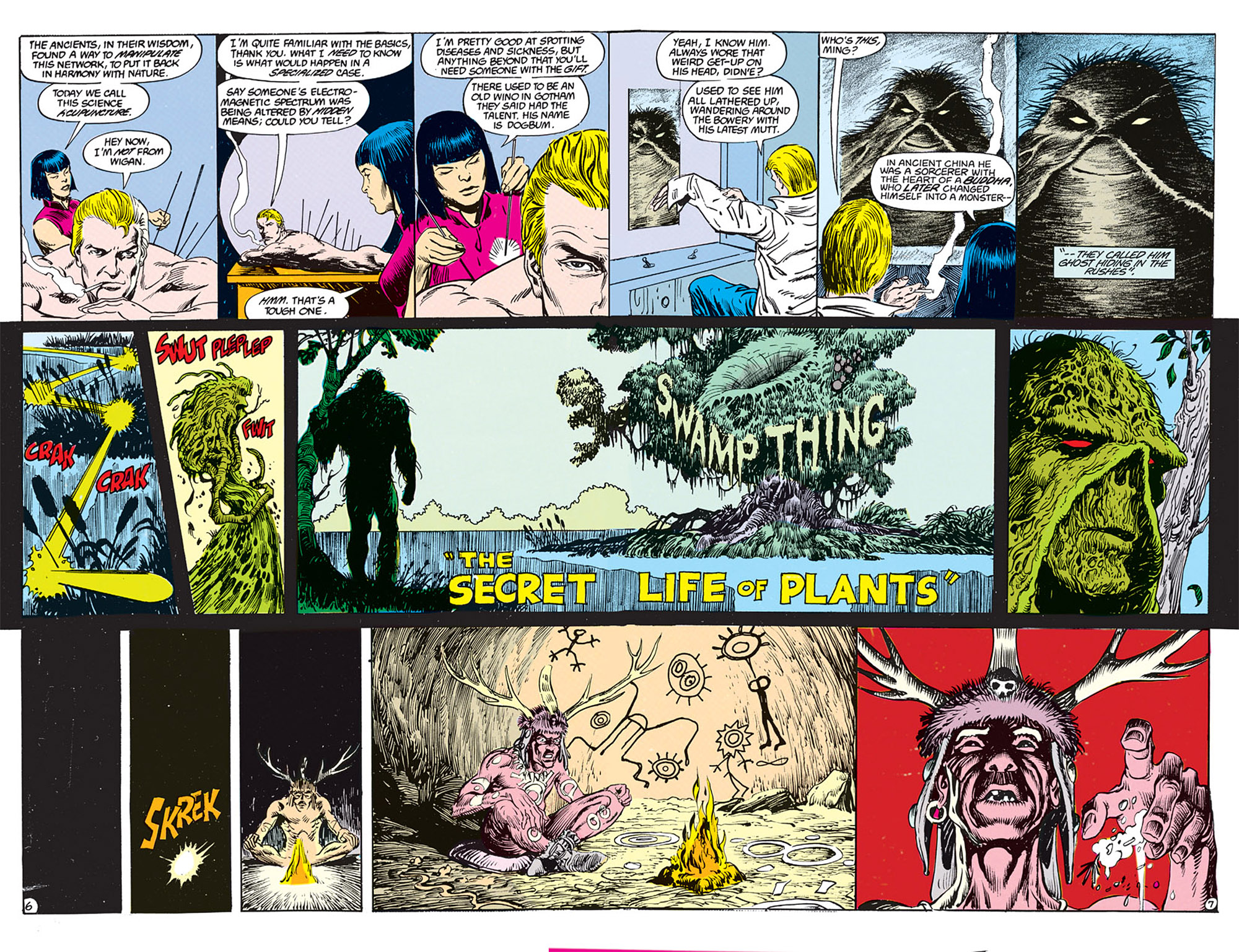 Swamp Thing (1982) Issue #70 #78 - English 5