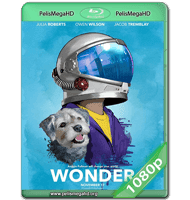 EXTRAORDINARIO (2017) WEB-DL 1080P HD MKV INGLÉS SUBTITULADO