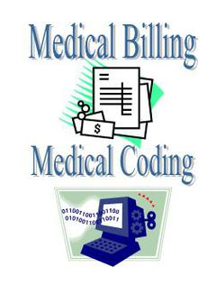 comprehensive medical coding and billing training online-medesun, Human body