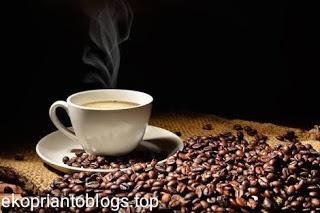 Santri kopi