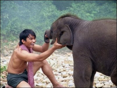 Punch In the Neck: The Protector - Gimme my Damned Elephant!!!