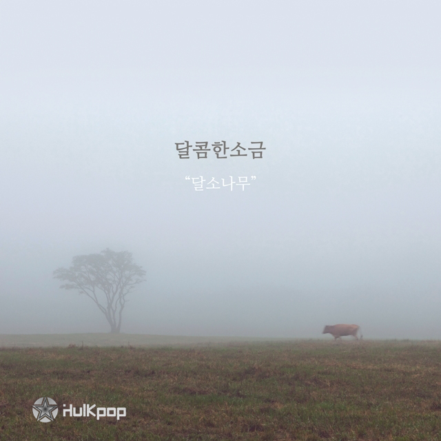 [EP] Sweet Salt  – 달소나무