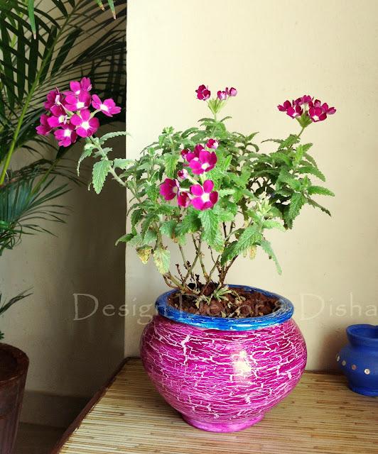 http://designdecoranddisha.blogspot.in/
