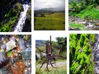 Obyek Wisata Yang Terkenal Kabupaten Pidie