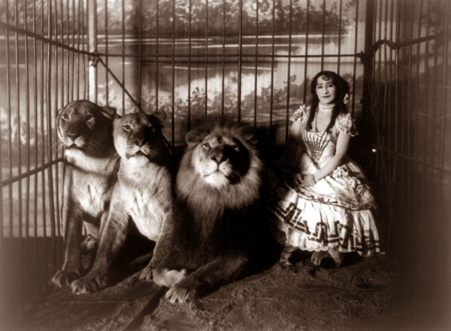 Awesome Vintage Circus Photographs Vintage Everyday
