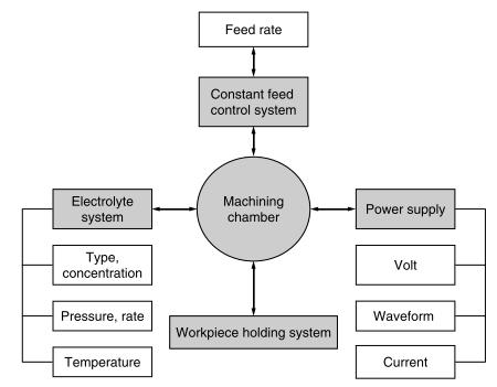 ECM system components