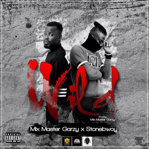 Mix Master Garzy ft Stonebwoy – Wild