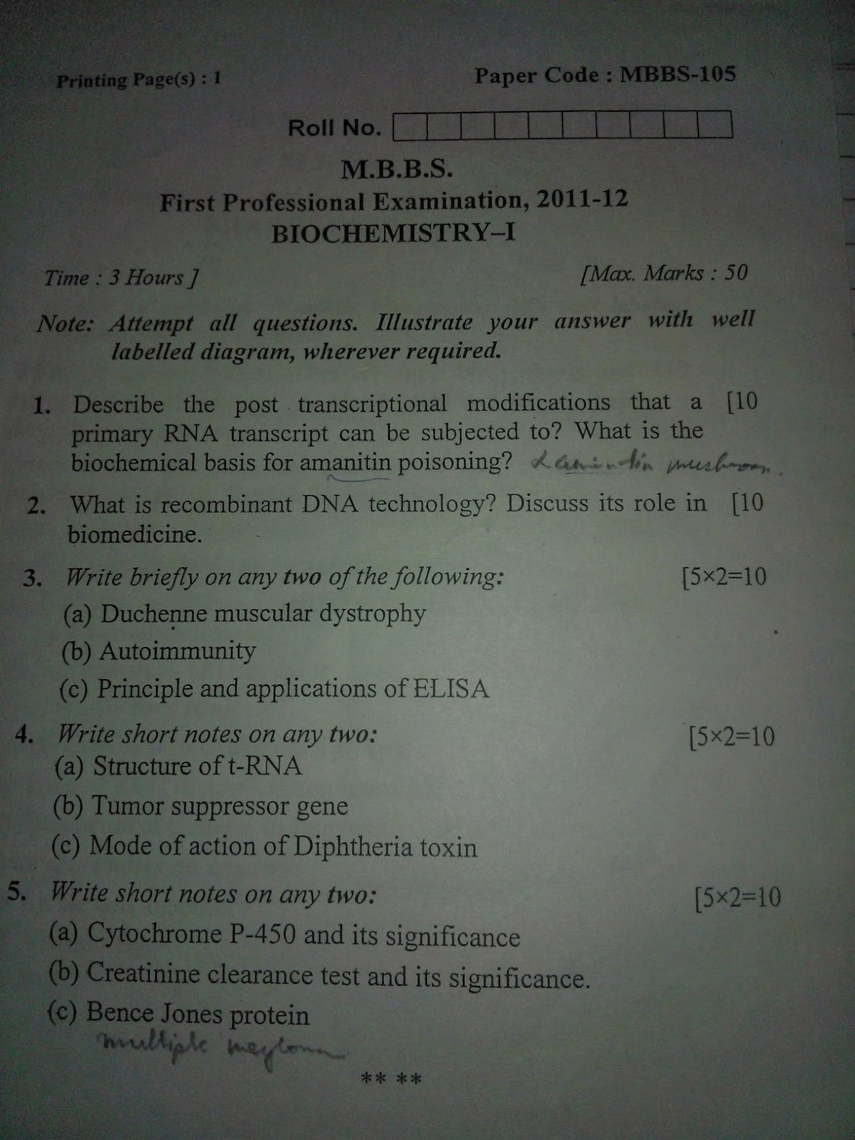 1st Year Mbbs Anatomy Important Questions