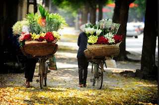 Charm of flower bicycle along Hanoi street 3