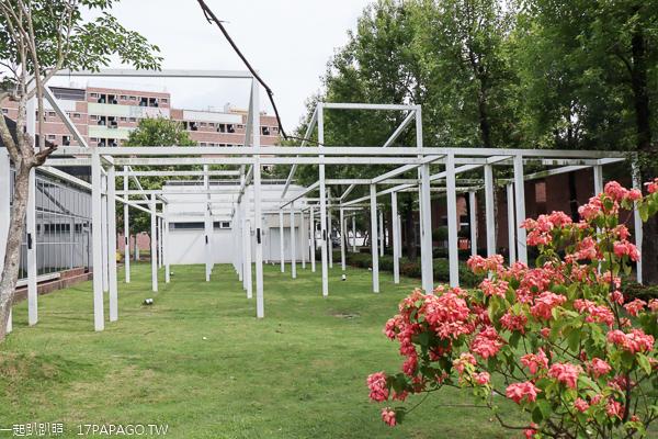 台中霧峰|亞洲大學|歐洲宮殿|羅馬兢技場|現代美術館|阿勃勒步道