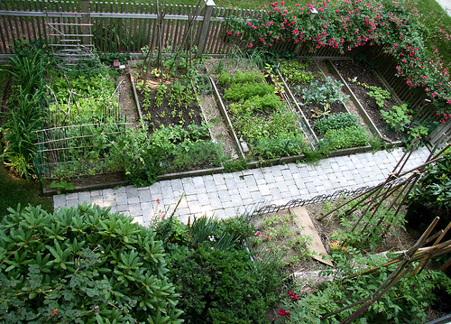 10 Ways To Style Your Very Own Vegetable Garden: Organic Gardening: July 2012