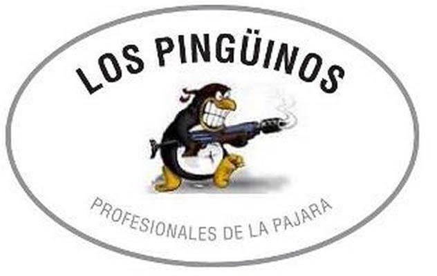 Pinguinos En Blanco Y Negro