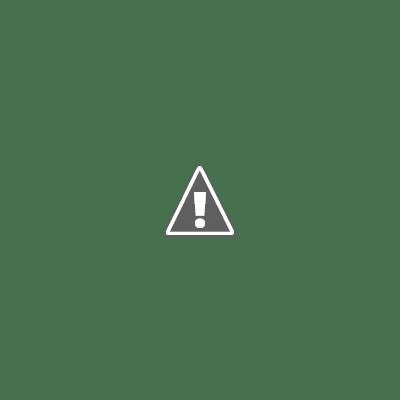 Võ phái Nam Tông