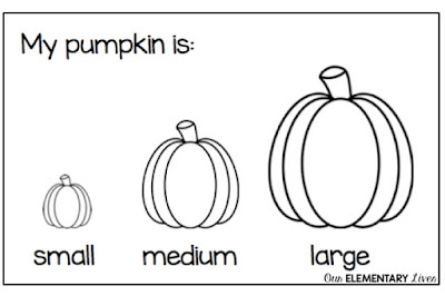 size of the pumpkin