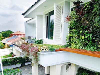 Tukang Taman Surabaya Vertikal Garden
