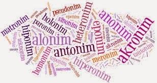 Contoh Lengkap Sinonim Antonim Homonim