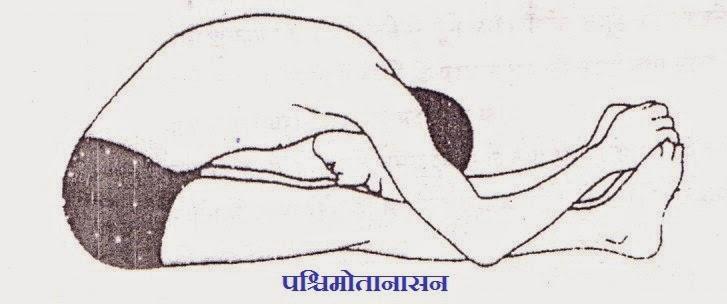 Paschimottanasan-Yoga-in-Hindi