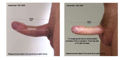 Curved Penis Straight 30
