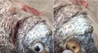 Κουβέιτ: Ιδιοκτήτης εστιατορίου κολλούσε ψεύτικα πλαστικά μάτια στα ψάρια για να φαίνονται φρέσκα