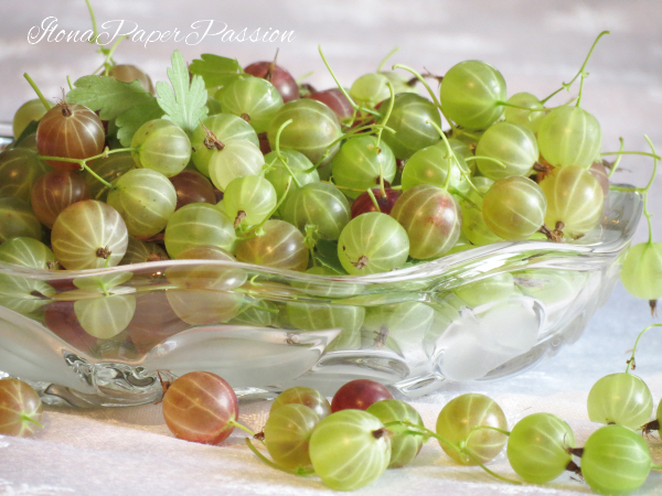 Gooseberry Jam Recipe by ilonaspassion.com