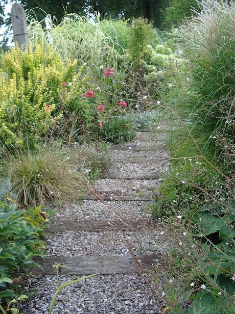 ścieżka w ogrodzie pokazowym w Rykach
