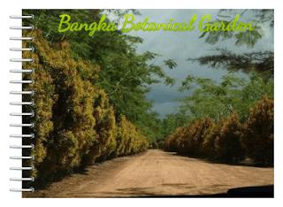 Bangka Botanical Garden,Tempat Wisata di Bangka Belitung