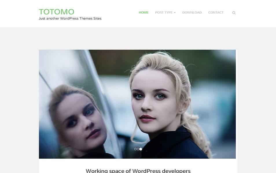Totomo Responsive WordPress Theme