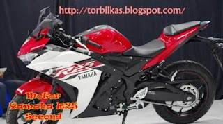 Jual Motor Yamaha R 25 Second Murah Lengkap