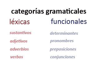 Las categorías gramaticales y su clasificación