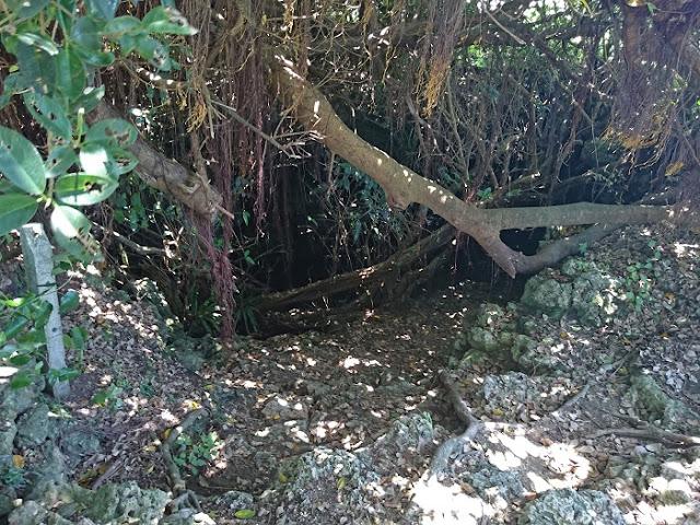沖縄陸軍病院本部壕跡(サキアブ)の写真