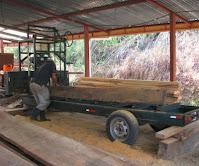 lumber saw