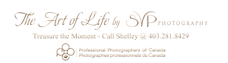Calgary Master Photographer Artist at SVP Photography 403.281.8429