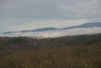 blue ridge lodge view