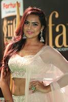 Prajna Actress in backless Cream Choli and transparent saree at IIFA Utsavam Awards 2017 0131.JPG
