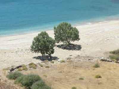Ancient Island Escape Juego