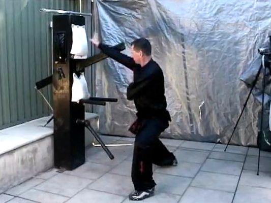 Daily Kung Fu May 2012