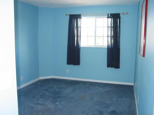 What Color Walls Goes With Blue Carpet Carpet Vidalondon