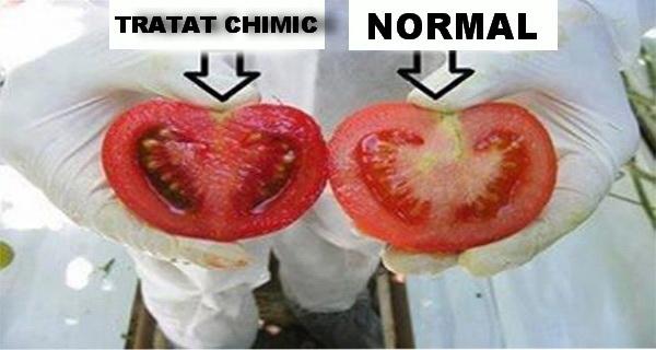 alimentele incarcate cu chimicale pot fi recunoscute dupa aspect, marime si culoare