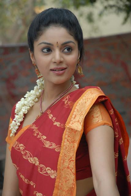 Sanam shetty in sari