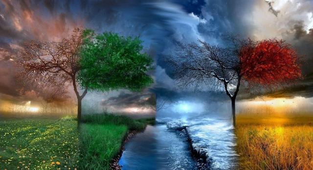 Зима, Весна, Лето и Осень фото