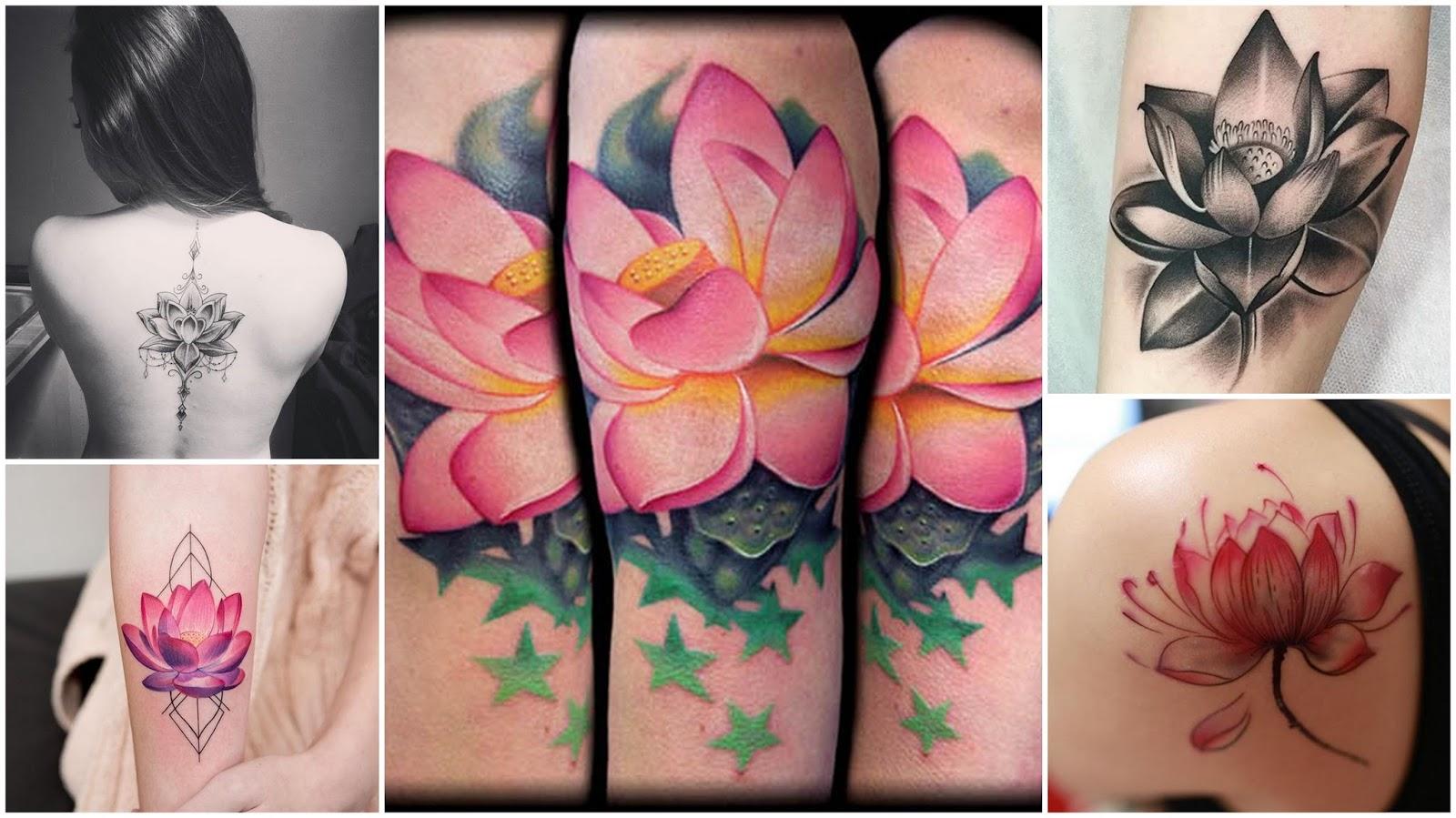 Dirio da ruiva tatuagens e seus significados uma das tatuagens tradicionais mais belas na minha humilde opinio geralmente quem tatua uma flor de ltus busca algo que simbolize sua relao com a thecheapjerseys Image collections