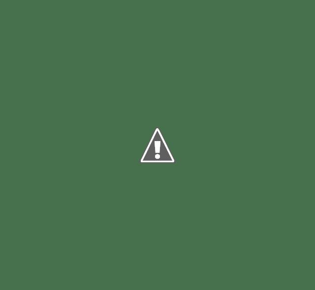 Google Search Console introduit le rapport de Discover